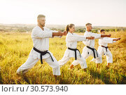 Купить «Karate group with master in white kimono», фото № 30573940, снято 26 августа 2018 г. (c) Tryapitsyn Sergiy / Фотобанк Лори