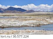 Купить «Великие озера Тибета. Солоноводное озеро Рулдан (Нак) на Тибетском нагорье летом. Китай», фото № 30577224, снято 11 июня 2018 г. (c) Овчинникова Ирина / Фотобанк Лори