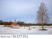 Купить «Гатчина, Приоратский дворец», фото № 30577912, снято 28 марта 2019 г. (c) Юлия Бабкина / Фотобанк Лори
