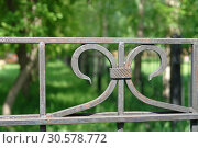 Fragment of steel fence in the park. Green trees blurred on background. Стоковое фото, фотограф Dmitry Domashenko / Фотобанк Лори