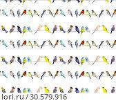 Birds. Watercolor hand dawn illustration. Стоковая иллюстрация, иллюстратор Мария Кутузова / Фотобанк Лори