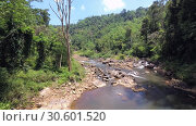 Купить «River in the jungle - Camera rotation, panorama. Landscape on Sinharaja Forest Reserve, Sri Lanka», видеоролик № 30601520, снято 10 апреля 2019 г. (c) Некрасов Андрей / Фотобанк Лори