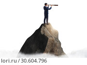Купить «Businessman at the top of mountain», фото № 30604796, снято 24 августа 2019 г. (c) Elnur / Фотобанк Лори