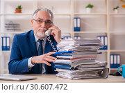Aged male employee working in the office. Стоковое фото, фотограф Elnur / Фотобанк Лори