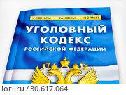 Купить «Уголовный кодекс Российской Федерации», фото № 30617064, снято 16 марта 2019 г. (c) Victoria Demidova / Фотобанк Лори