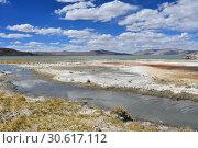 Купить «Великие озера Тибета, озеро Рулдан (Нак) на Тибетском нагорье летом. Китай», фото № 30617112, снято 11 июня 2018 г. (c) Овчинникова Ирина / Фотобанк Лори