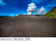 Купить «Bromo volcano (Gunung Bromo)in Bromo Tengger Semeru National Park, East Java, Indonesia.», фото № 30631376, снято 24 апреля 2017 г. (c) easy Fotostock / Фотобанк Лори