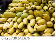 Купить «appetizing bananas on counter in market», фото № 30643676, снято 26 мая 2018 г. (c) Татьяна Яцевич / Фотобанк Лори