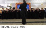 Купить «Vocal performance of Russian choir at Moscow airport», видеоролик № 30651916, снято 22 декабря 2017 г. (c) Данил Руденко / Фотобанк Лори