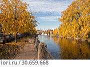 Купить «Sunny autumn day in St. Petersburg. Linden trees with yellowed leaves on the Moika River Embankment», фото № 30659668, снято 16 октября 2018 г. (c) Юлия Бабкина / Фотобанк Лори