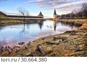 Купить «Псков. Завершение сезона. Pigeons swimming in the Pskov River», фото № 30664380, снято 31 декабря 2013 г. (c) Baturina Yuliya / Фотобанк Лори