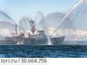 Купить «Пожарно-спасательное судно «Спасатель» ПЖС-219 аварийно-спасательного отряда Тихоокеанского флота Войск и сил на Северо-востоке России», фото № 30664756, снято 27 апреля 2019 г. (c) А. А. Пирагис / Фотобанк Лори