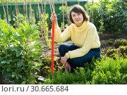 Купить «Young woman in a yellow sweater treats weeds in the garden», фото № 30665684, снято 23 июля 2019 г. (c) Яков Филимонов / Фотобанк Лори