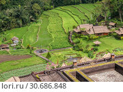 Купить «Rural landscape, farm and rice fields in the jungle, Bali, Indonesia», фото № 30686848, снято 27 сентября 2010 г. (c) Юлия Бабкина / Фотобанк Лори