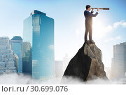 Купить «Businessman at the top of mountain», фото № 30699076, снято 24 августа 2019 г. (c) Elnur / Фотобанк Лори