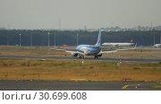 Купить «TUIFly Boeing 737 landing», видеоролик № 30699608, снято 20 июля 2017 г. (c) Игорь Жоров / Фотобанк Лори