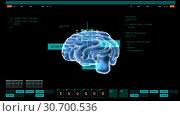 Купить «digital image of brain on computer screen», видеоролик № 30700536, снято 24 августа 2019 г. (c) Syda Productions / Фотобанк Лори