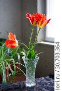 Купить «Red tulips in a vase on the table», фото № 30703364, снято 2 мая 2019 г. (c) Андрей Башкин / Фотобанк Лори