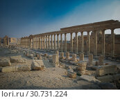Купить «Panorama of Palmyra columns and ancient city, destroyed now, Syria», фото № 30731224, снято 4 января 2011 г. (c) Сергей Майоров / Фотобанк Лори