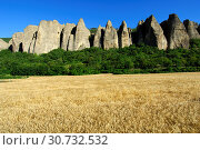 Купить «Felsformation Pénitents, Les Mées, Provence, Frankreich / Rock formation Pénitents, Les Mées, Provence, France», фото № 30732532, снято 16 июля 2019 г. (c) age Fotostock / Фотобанк Лори