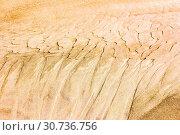 Купить «Corrugated sand texture», фото № 30736756, снято 17 августа 2018 г. (c) Акиньшин Владимир / Фотобанк Лори