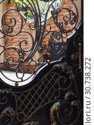 Купить «Кованная,ажурная калитка», фото № 30738272, снято 25 апреля 2019 г. (c) Марина Володько / Фотобанк Лори