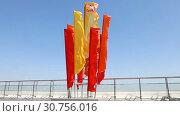 Купить «Разноцветные флаги развеваются на фоне голубого неба в День Победы», видеоролик № 30756016, снято 9 мая 2019 г. (c) FotograFF / Фотобанк Лори
