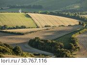 Купить «Summer evening in South Downs National Park, East Sussex, England.», фото № 30767116, снято 7 сентября 2016 г. (c) age Fotostock / Фотобанк Лори