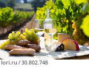 Купить «White wine with cheese, bread and grapes in vineyard», фото № 30802748, снято 21 мая 2019 г. (c) Яков Филимонов / Фотобанк Лори