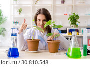 Купить «Young beautiful biotechnology chemist working in the lab», фото № 30810548, снято 5 декабря 2018 г. (c) Elnur / Фотобанк Лори