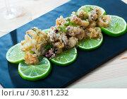 Купить «Fried calamari and sepia in a batter of tempera flour on a cushion of pickled limes», фото № 30811232, снято 23 октября 2019 г. (c) Яков Филимонов / Фотобанк Лори