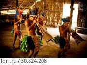 Купить «Indian, Indigenous dance, Dessano Tribe, Tupé Community, Manaus, Amazônia, Amazonas, Brazil», фото № 30824208, снято 29 сентября 2008 г. (c) age Fotostock / Фотобанк Лори