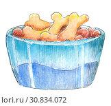 Купить «Dog bowl. Watercolor sketch.», иллюстрация № 30834072 (c) Любовь Назарова / Фотобанк Лори
