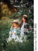 Купить «Little sisters outdoor portrait near lilac tree at spring evening», фото № 30841980, снято 22 мая 2019 г. (c) Julia Shepeleva / Фотобанк Лори