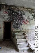 Купить «Балашиха, интерьер разрушенной бани на улице Флерова», эксклюзивное фото № 30851924, снято 30 мая 2019 г. (c) Дмитрий Неумоин / Фотобанк Лори