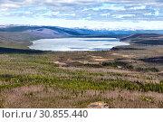 Купить «Northern landscape. Lake is ice-covered. Impenetrable swamps in the north», фото № 30855440, снято 16 июня 2017 г. (c) Евгений Ткачёв / Фотобанк Лори