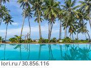 Купить «Кокосовые пальмы отражаются в бассейне отеля на берегу Индийского океана. Sanmali Beach Hotel, Marawila, Шри-Ланка», фото № 30856116, снято 22 апреля 2019 г. (c) Владимир Сергеев / Фотобанк Лори