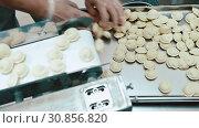 Купить «Pelmeni making process factory handmade», видеоролик № 30856820, снято 2 июня 2019 г. (c) Mark Agnor / Фотобанк Лори