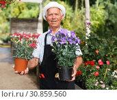 Купить «Senior man in glasshouse», фото № 30859560, снято 13 июня 2018 г. (c) Яков Филимонов / Фотобанк Лори