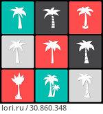 Vector palm tree icon. Стоковая иллюстрация, иллюстратор Альдана Прокофьева / Фотобанк Лори