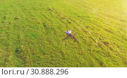 Купить «Low orbital flight around man on green grass with notebook pad at yellow rural field.», видеоролик № 30888296, снято 22 марта 2019 г. (c) Александр Маркин / Фотобанк Лори