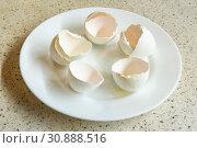 Купить «Скорлупа 5 куриных яиц на тарелке», фото № 30888516, снято 30 декабря 2018 г. (c) Иванов Алексей / Фотобанк Лори
