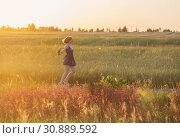 Купить «teenager girl in summer field at sunset», фото № 30889592, снято 6 июня 2019 г. (c) Майя Крученкова / Фотобанк Лори