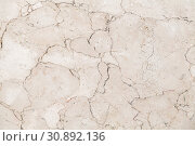 Natural white marble wall panel, close up. Стоковое фото, фотограф EugeneSergeev / Фотобанк Лори