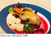 Купить «Fried quail with cranberry sauce and caramelized carrots», фото № 30925148, снято 26 июня 2019 г. (c) Яков Филимонов / Фотобанк Лори