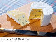 Купить «Soft blue cheese», фото № 30949780, снято 23 июля 2019 г. (c) Яков Филимонов / Фотобанк Лори
