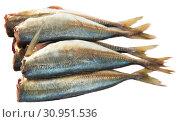 Купить «Atlantic horse mackerel», фото № 30951536, снято 19 июля 2019 г. (c) Яков Филимонов / Фотобанк Лори
