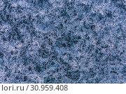Купить «Patterns on the ice of lake Baikal. Irkutsk region, Eastern Siberia, Russia», фото № 30959408, снято 18 марта 2019 г. (c) Наталья Волкова / Фотобанк Лори