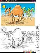 Cartoon Illustration of Camel Animal Character on the Desert Coloring Book Activity. Стоковое фото, фотограф Zoonar.com/Igor Zakowski / easy Fotostock / Фотобанк Лори