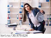 Купить «Young pregnant woman working in the office», фото № 30979624, снято 4 февраля 2019 г. (c) Elnur / Фотобанк Лори